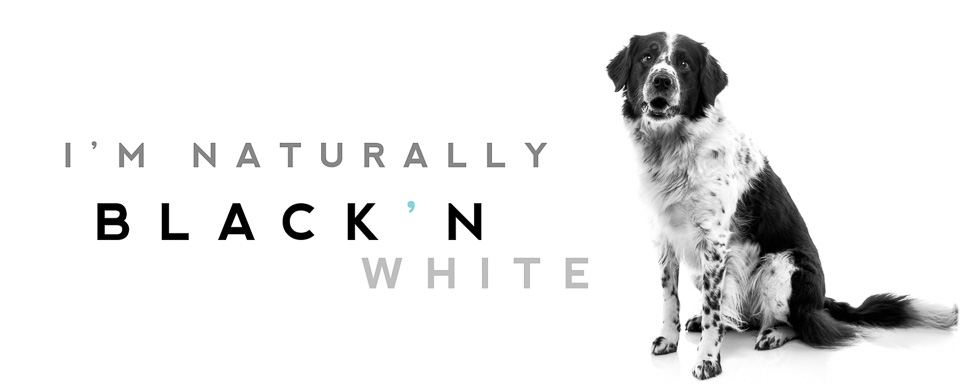 Janne Aavasalo - Dog saying: I'm naturally black and white