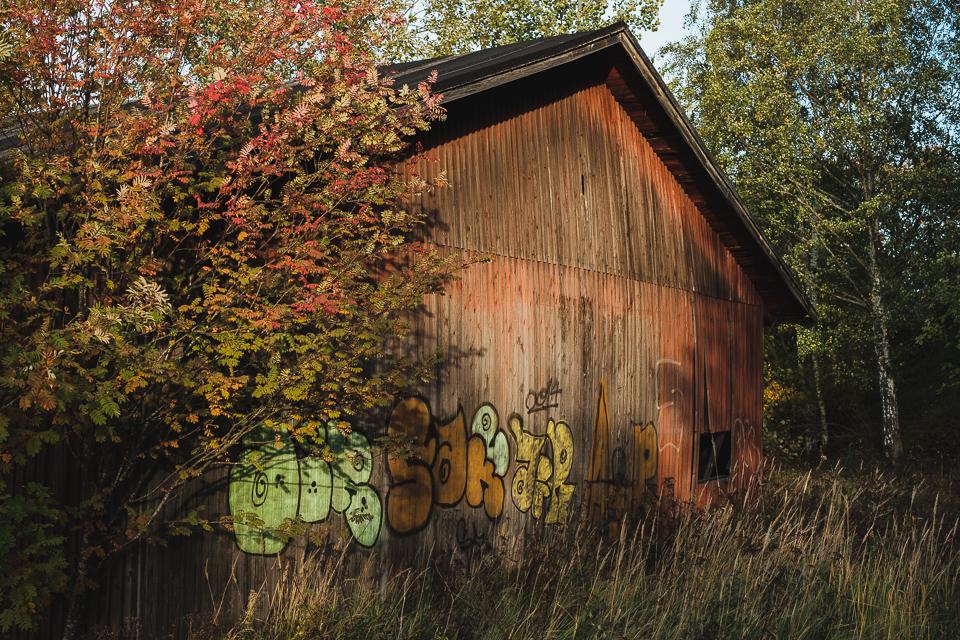 Old barn in evening sun