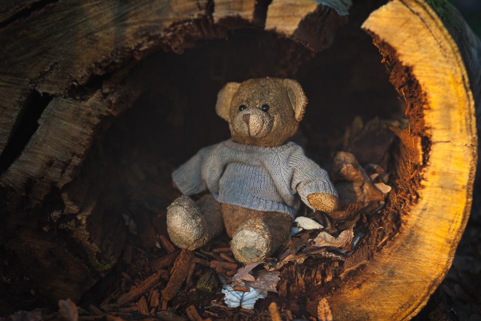 A toy bear sitting inside a hollow log
